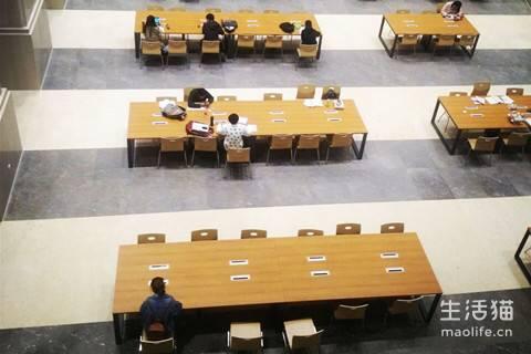 成都失业证补办办理条件、时间、费用、地点、政策规定、线上查询、电话查询、线下查询是如何的